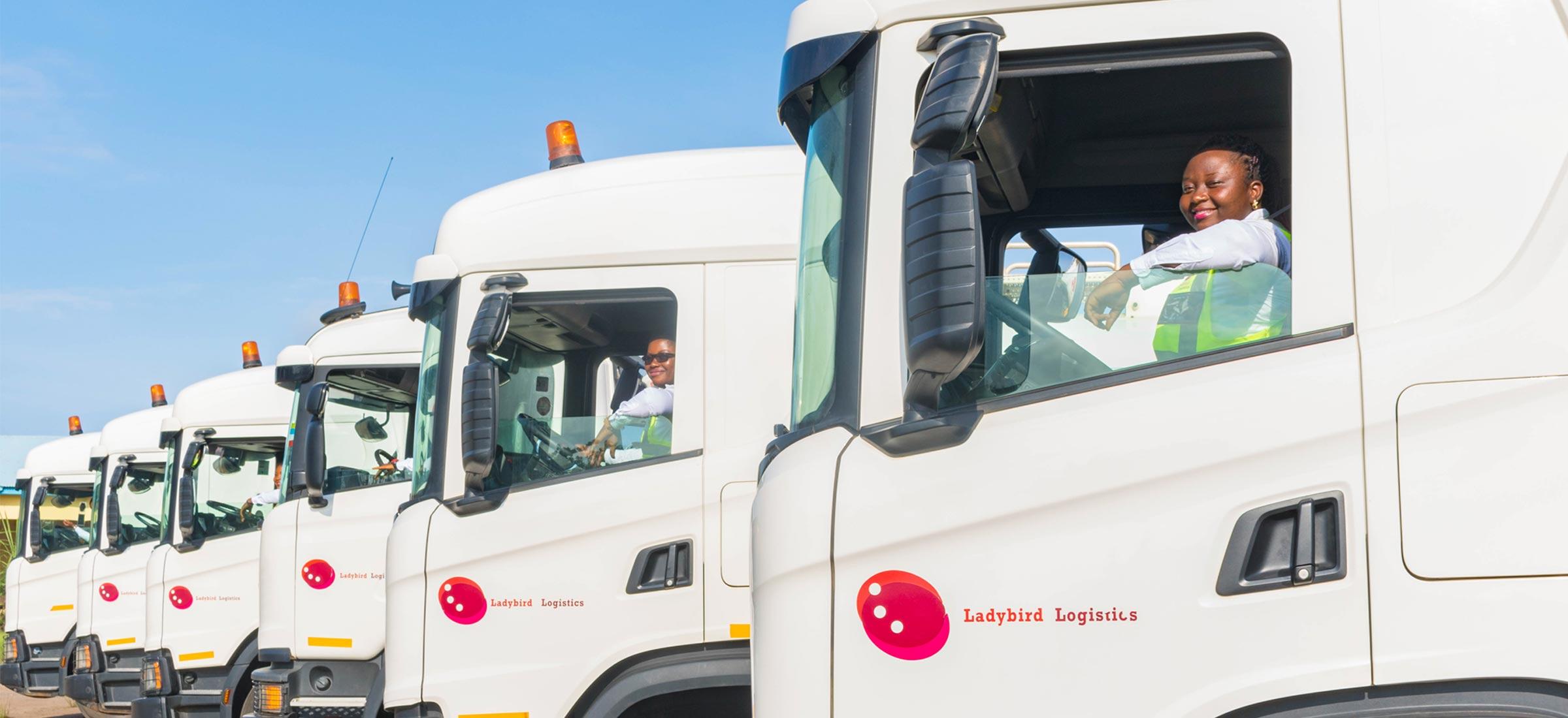 Ladybird Truck Fleet